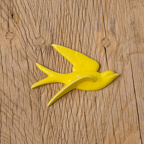 Hirondelle jaune T3