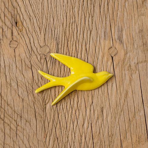 Hirondelle jaune T2
