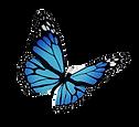 monarch-butterfly-flight-royalty-free-bu