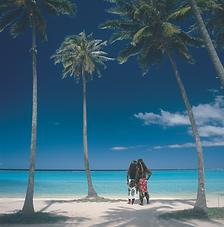 Tahiti.tif
