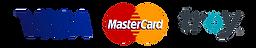iyzico-visa-mastercard-troy_edited.png