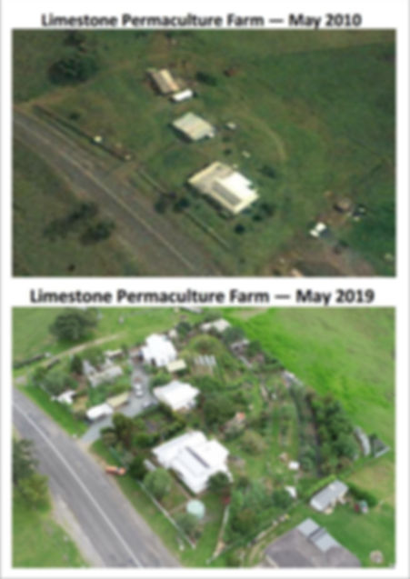 Limestone Before & After 2019.jpg