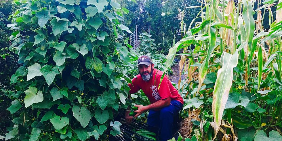 The Edible Permaculture Garden