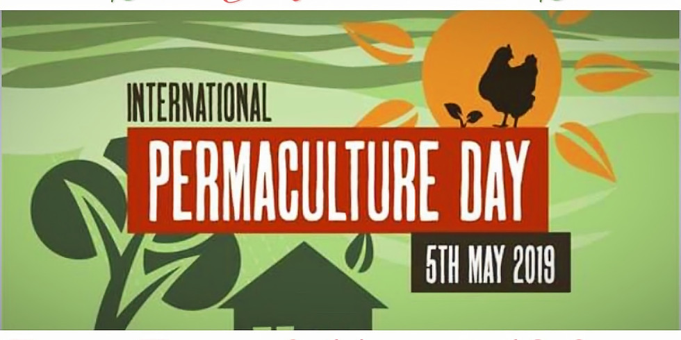 International Permaculture Day - Afternoon Farm Tour