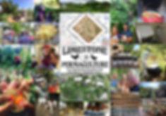 Limestone Landscape 11 promo poster.jpg