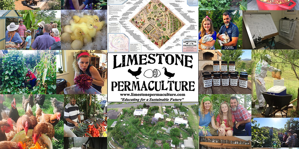 Introduction to Permaculture - July