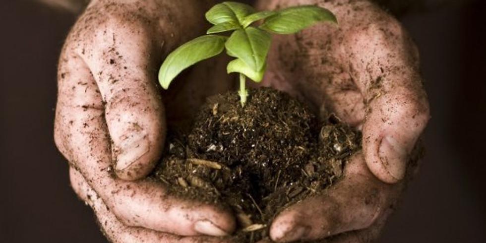 Living Soils Workshop