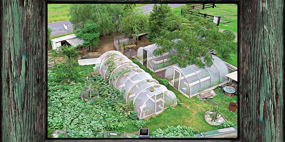 2020 Extended 14 day Permaculture Design Course (PDC - Winter)