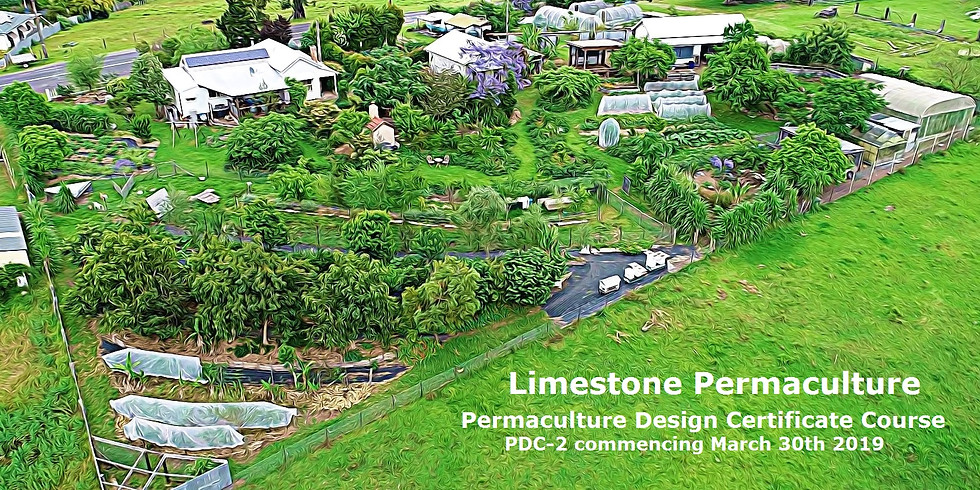 PDC2: Permaculture Design Certificate - Autumn / Winter 2019