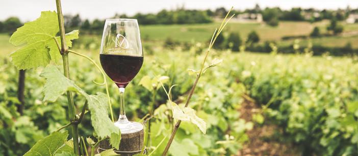 Un salon virtuel autour du vin pour les pros du tourisme en Bourgogne