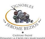 vins-de-gaillac-809022-2372842-677x600.jpg
