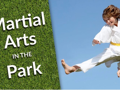 Summer Bucket List: Free- Martial Arts in the Park