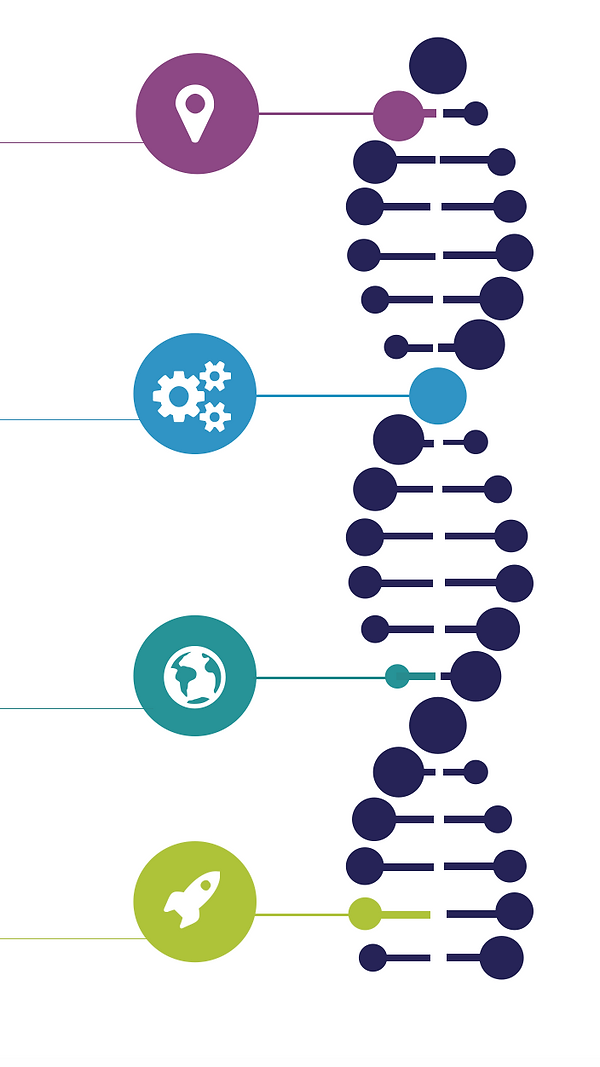 DNA of an Anastasis Academy Graduate