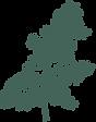 MPP-Fern-Illo-Evergreen.png