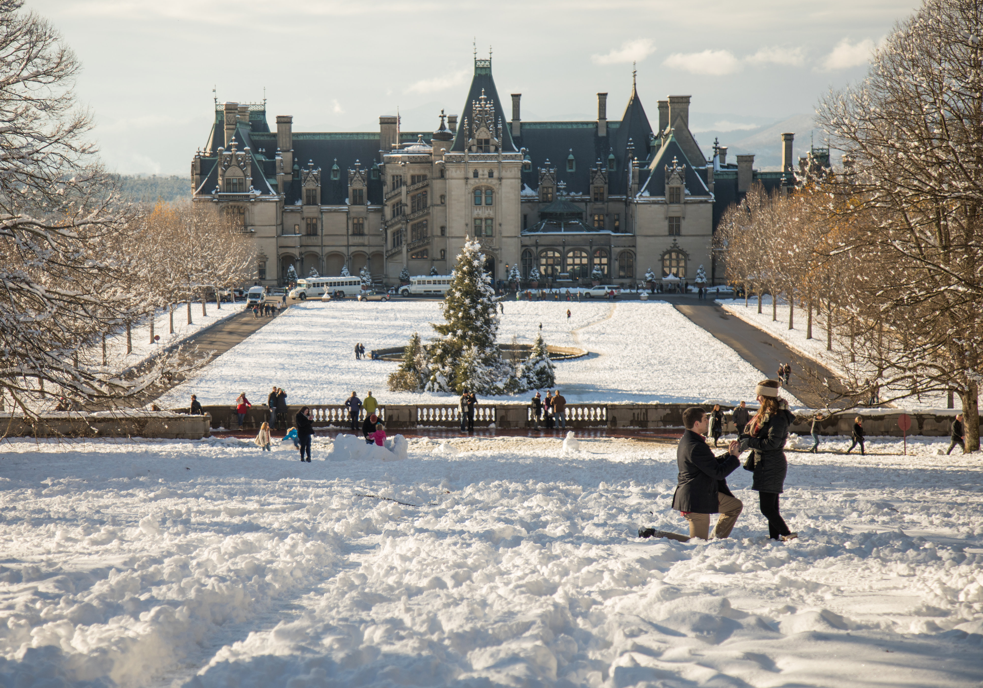Biltmore proposal photography