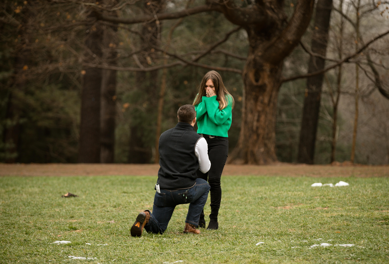 surprise proposal biltmore