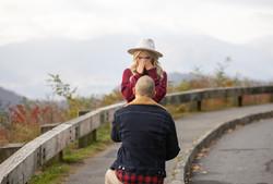 Blue Ridge Parkway Proposal