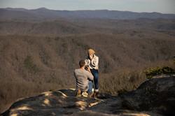 Surprise proposal Asheville