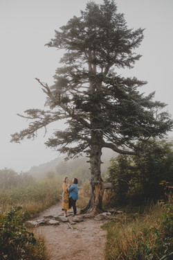 black balsam engagement photography