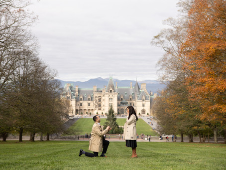 Beautiful Biltmore Estate Proposal : E + K