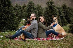 asheville family photos