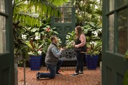 biltmore conservatory proposal