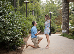 asheville proposal ideas
