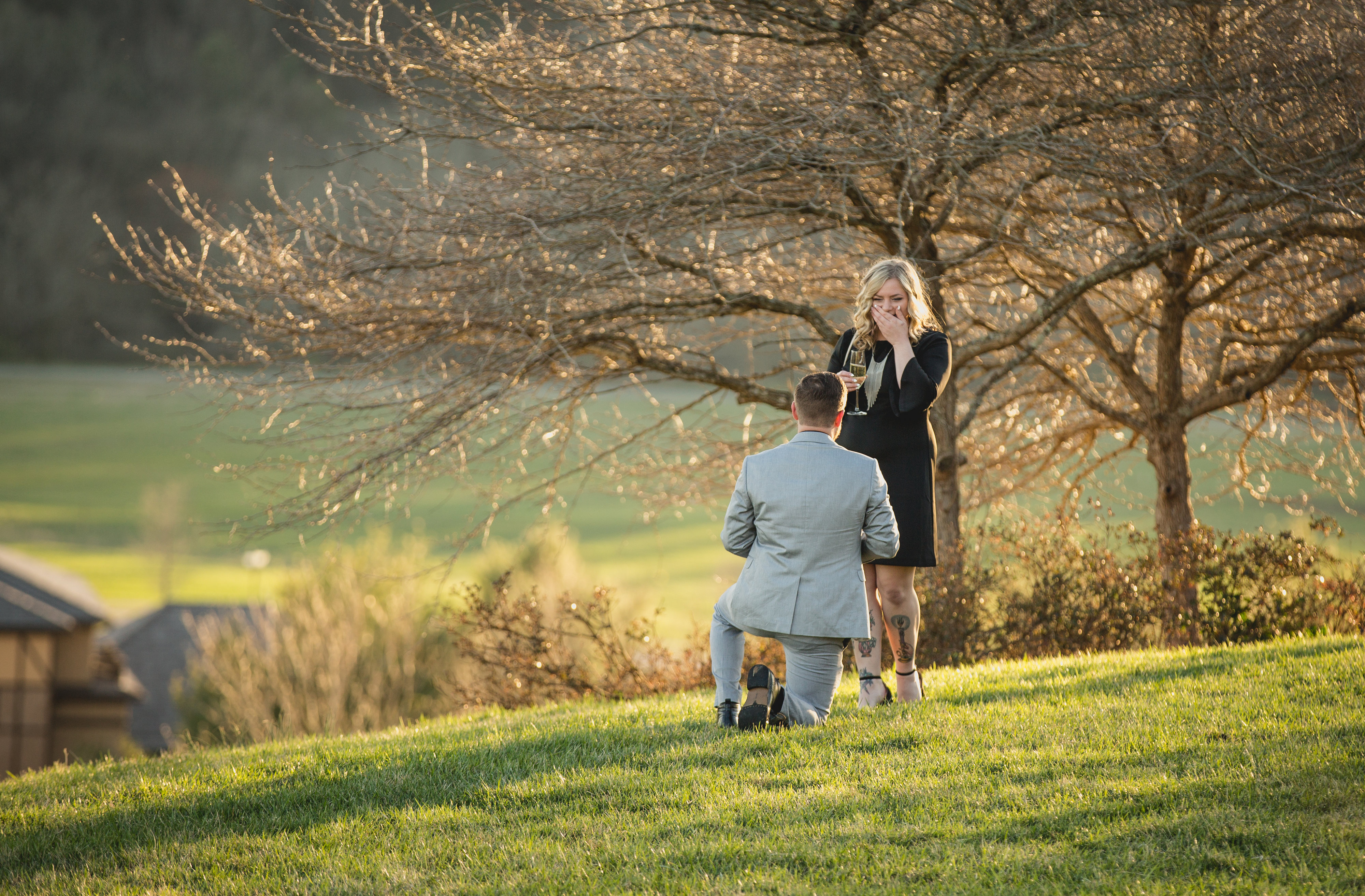 proposal locations asheville