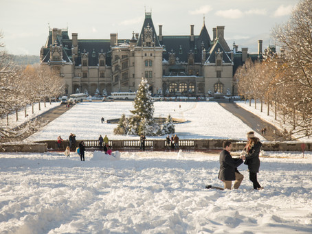Biltmore Proposals:  3 in one day!!!