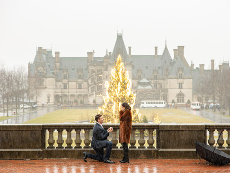 Romantic Biltmore Proposal :  C + G
