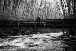 engagement photographers asheville