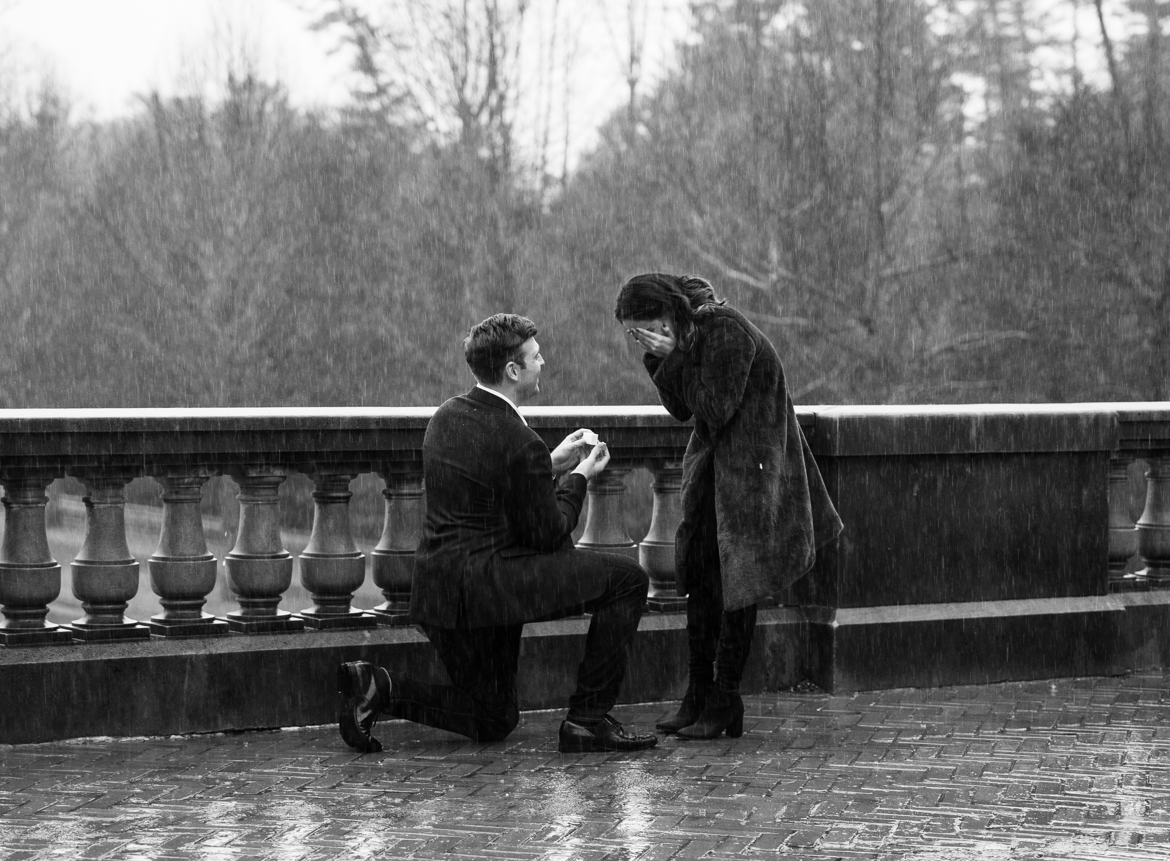 Biltmore proposals in the rain