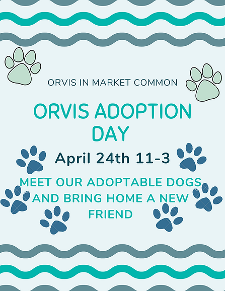 Orvis Adoption Day.png