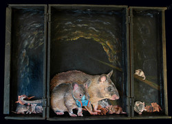 Fear Not the Rats_#3_MixedMedia_15x12_20