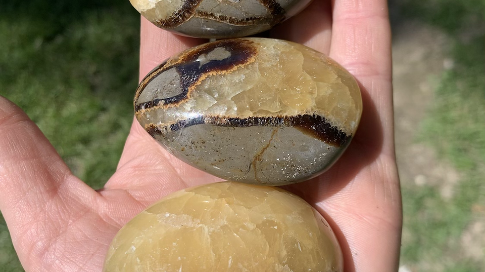 Septerian palm stone
