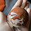 Thumbnail: Polychrome jasper