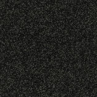 DOLPHIN DANCE 950.jpg