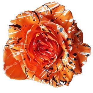 Rose Orange Painted