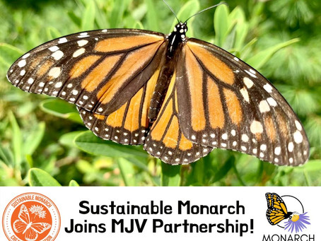Sustainable Monarch Joins the Monarch Joint Venture