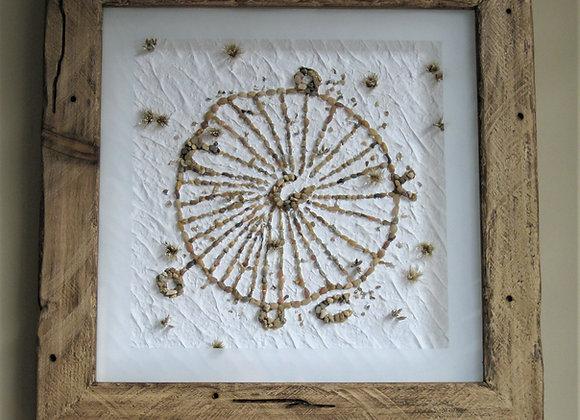Bighorn Medicine Wheel