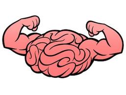 Brain Health on Steroids