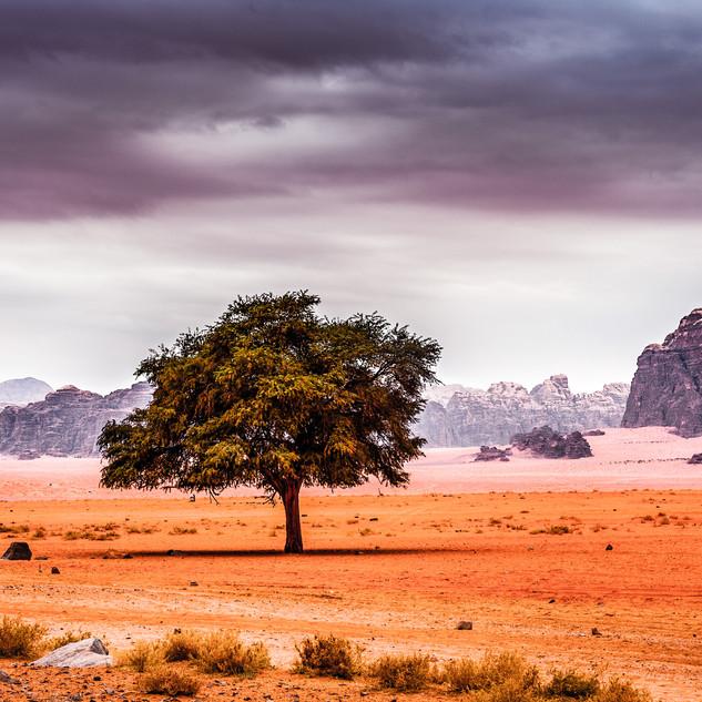 J Wadi Rum high res-5.jpg