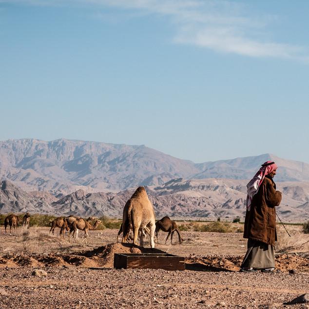 J Wadi Rum high res-10.jpg