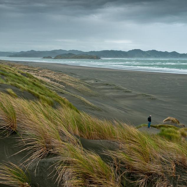 J New Zealand high res-9.jpg