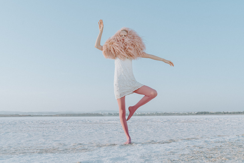 Flamingo-7.jpg