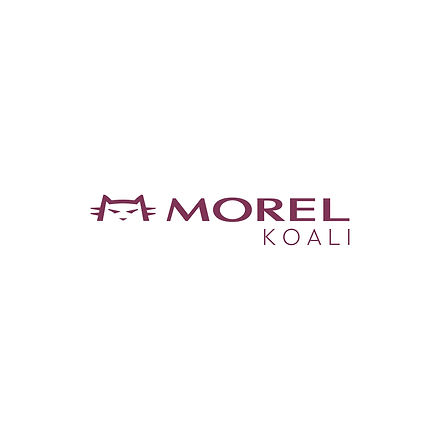 COLLECTIONS_MOREL-KOALI.jpg
