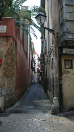 Palma centro