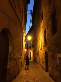 9- Palma nocturna
