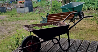 Photo of an Allotment