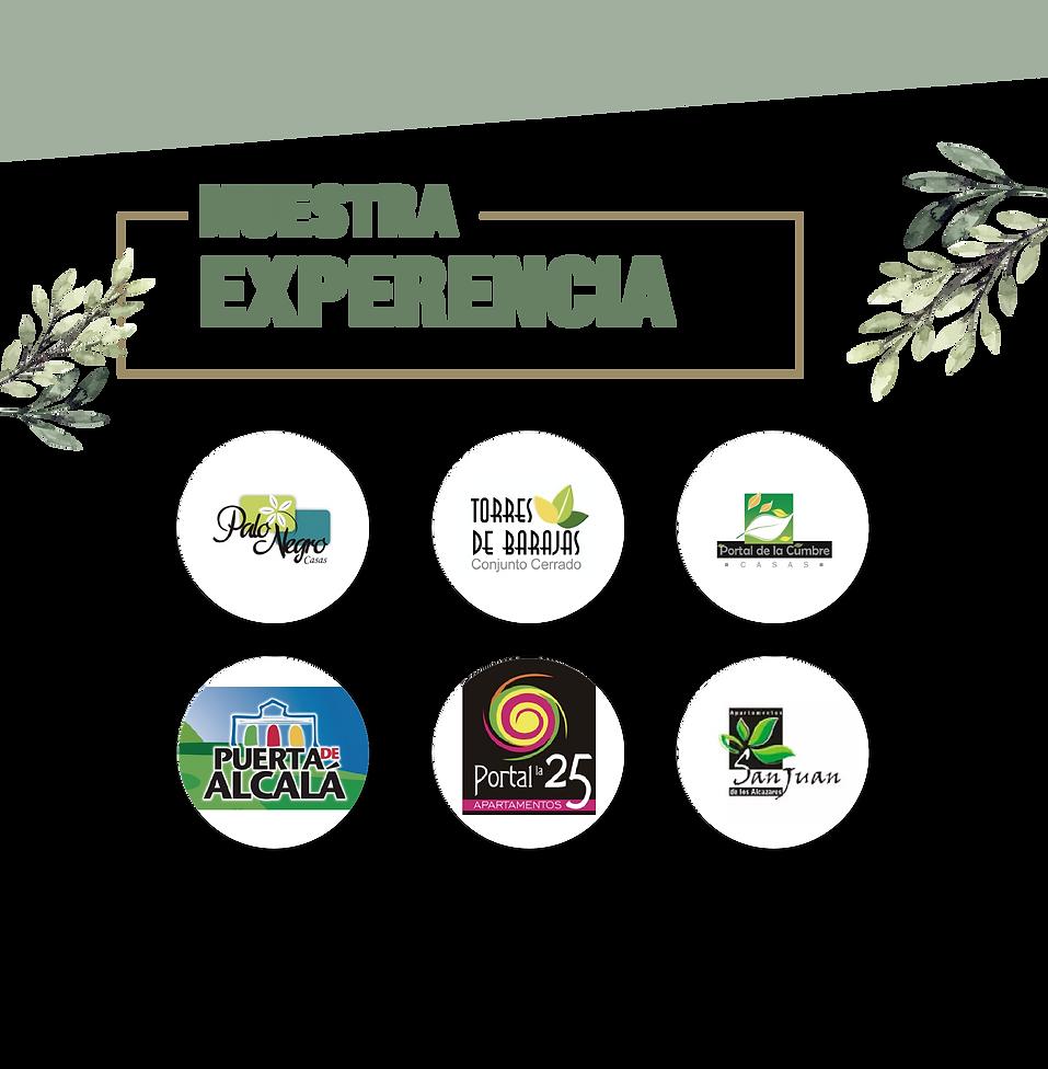 Experiencia_Mesa de trabajo 1.png